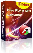 Free FLV to MP4 Converter box